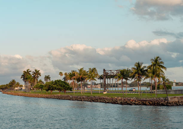 Scenic view of palm trees by sea against sky,North Miami,Florida,United States,USA