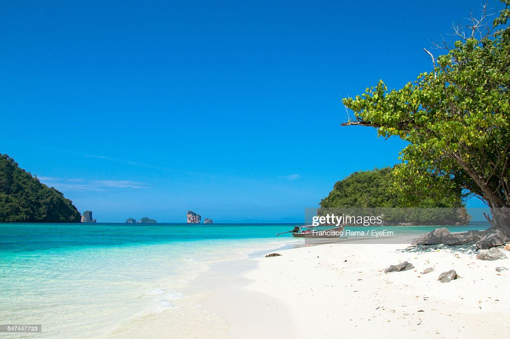 Scenic View Of Paradise Beach Against Clear Blue Sky : Foto de stock