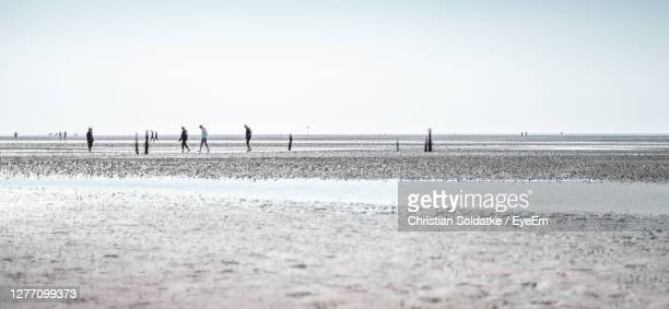 scenic view of people on beach against clear sky - soldatke stock-fotos und bilder