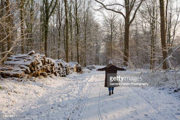 scenic view of people strolling in forest - hainaut stock pictures, royalty-free photos & images