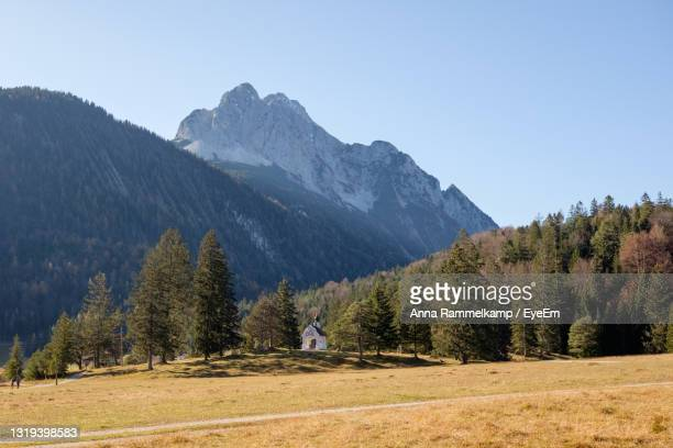 scenic view of pine trees on field against sky and mountains - mittenwald fotografías e imágenes de stock