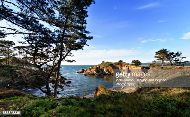 scenic view of point lobos state park in carmel by the sea - carmel california stock photos and pictures