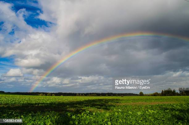 scenic view of rainbow over field against sky - rainy season stock pictures, royalty-free photos & images