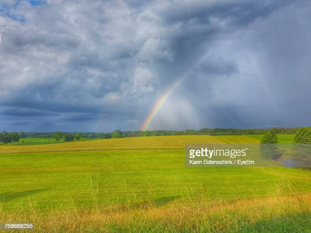 scenic view of rainbow over field - karin eidenschink stock-fotos und bilder
