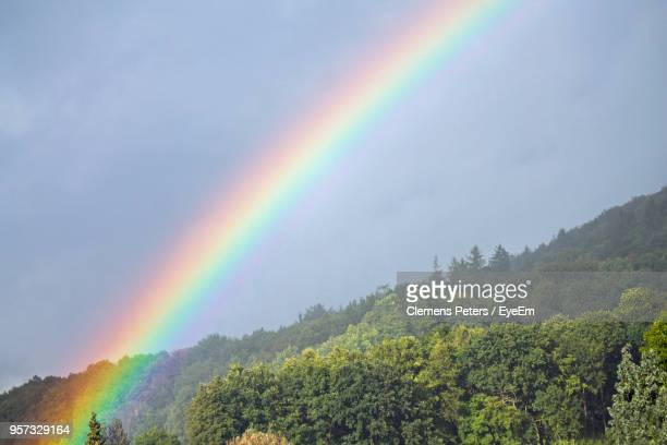 Scenic View Of Rainbow Over Forest Against Sky