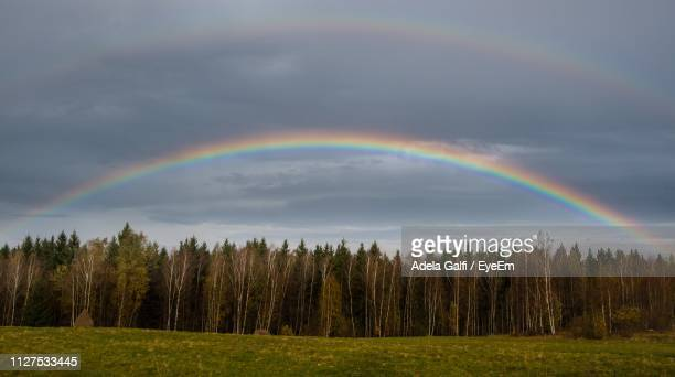 Scenic View Of Rainbow Over Trees Against Sky