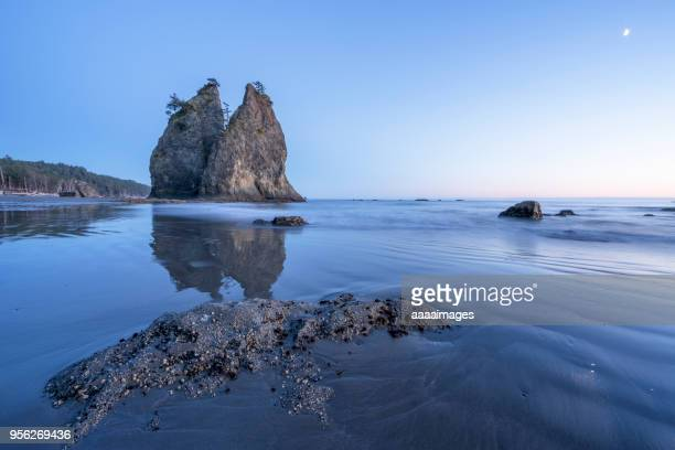 scenic view of rialto beach in olympic national park - rialto beach stock photos and pictures