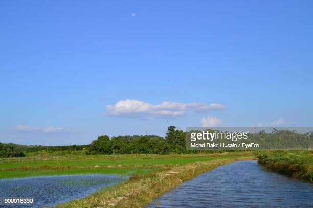Scenic View Of River Against Blue Sky