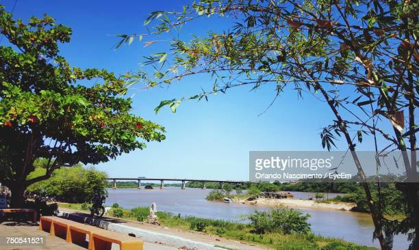 scenic view of river against clear blue sky - file:the_wyoming,_orlando,_fl.jpg stock pictures, royalty-free photos & images