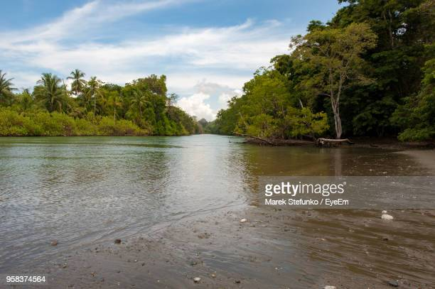 scenic view of river against sky - marek stefunko stock photos and pictures