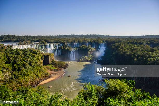 scenic view of river amidst trees against clear sky - iguacu falls stock pictures, royalty-free photos & images
