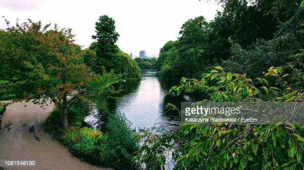scenic view of river amidst trees against clear sky - greater london stock pictures, royalty-free photos & images
