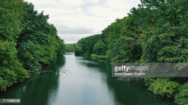 Scenic View Of River Amidst Trees Against Cloudy Sky