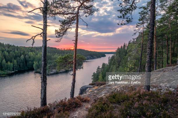scenic view of river amidst trees against sky during sunset - finland stock pictures, royalty-free photos & images
