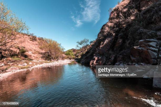 scenic view of river amidst trees against sky - cordoba argentina stock photos and pictures
