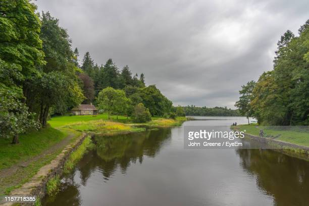 scenic view of river amidst trees against sky - county cavan stock photos and pictures