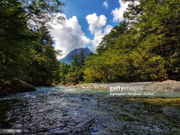 scenic view of river amidst trees against sky - 長野県 ストックフォトと画像