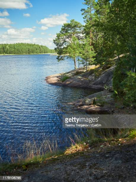 scenic view of river amidst trees against sky - teemu tretjakov stock pictures, royalty-free photos & images