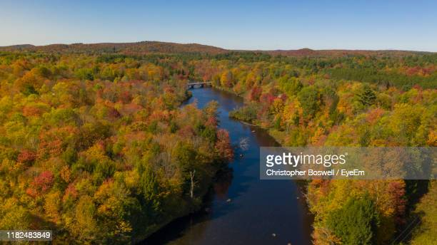 scenic view of river amidst trees against sky - glenn fine stock pictures, royalty-free photos & images
