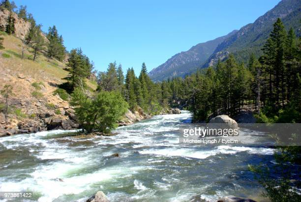 scenic view of river amidst trees against sky - bozeman stock pictures, royalty-free photos & images