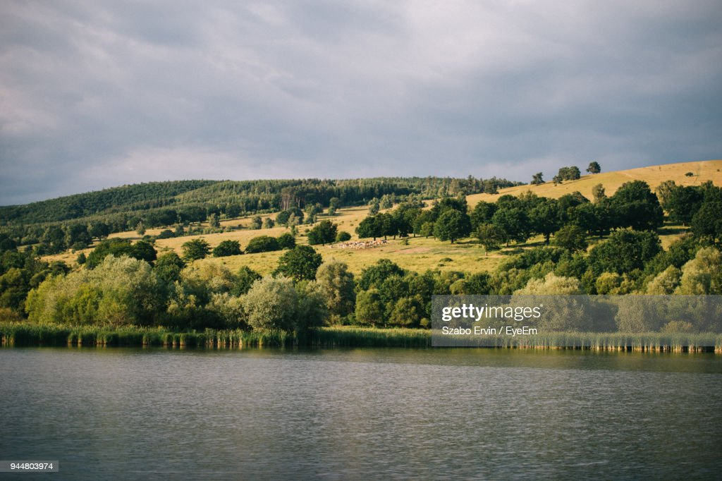 Scenic View Of River And Trees Against Sky : Stock Photo
