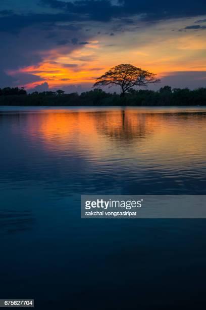 scenic view of river at sunset - パトゥムターニー県 ストックフォトと画像