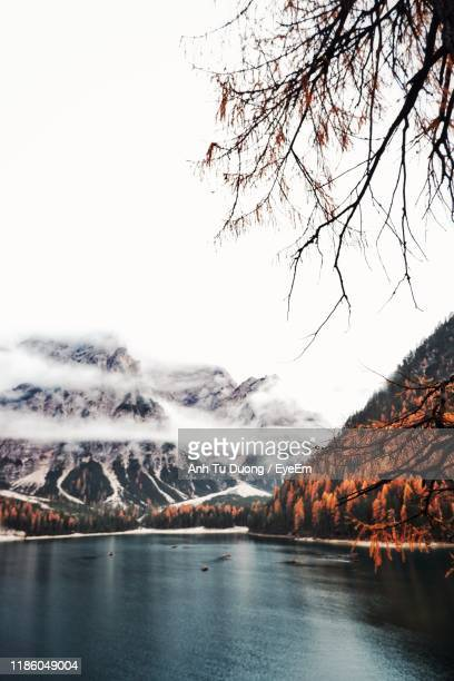 scenic view of river by mountains against clear sky - kale boom stockfoto's en -beelden
