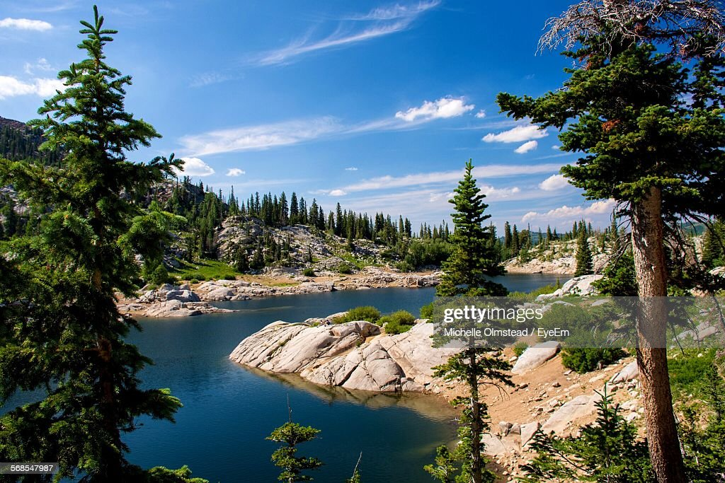 Scenic View Of River By Trees Against Sky : Stock Photo