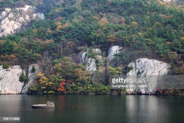 scenic view of river by trees on mountain - jeonju stock photos and pictures