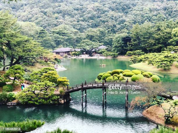 scenic view of river by trees - kagawa ストックフォトと画像