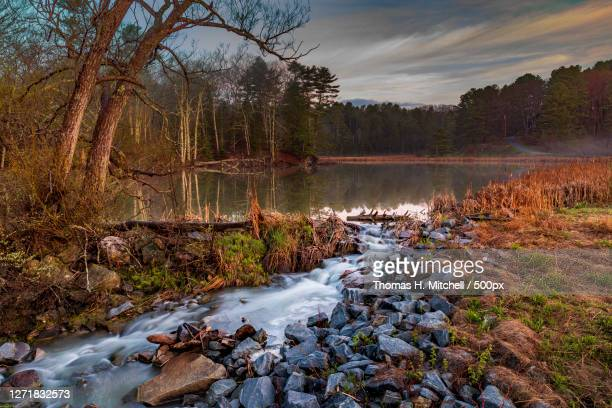 scenic view of river flowing in forest against sky, freeport, united states - brook mitchell stock-fotos und bilder