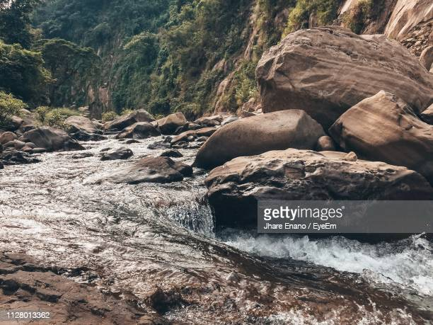 scenic view of river flowing through rocks in forest - enano stock pictures, royalty-free photos & images