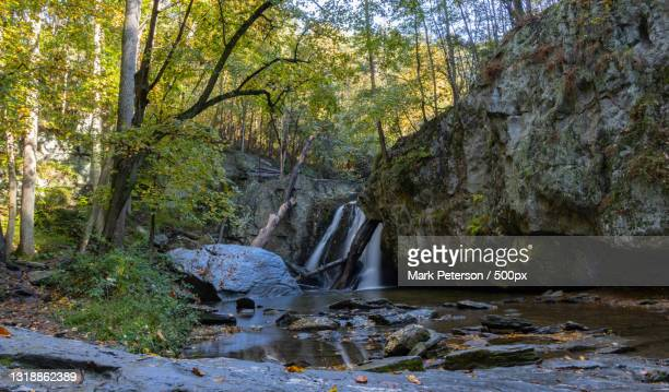 scenic view of river flowing through rocks in forest,forest hill,maryland,united states,usa - nature stock pictures, royalty-free photos & images