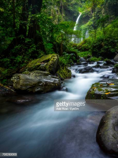 scenic view of river flowing through rocks - ade rizal stock photos and pictures