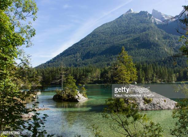 scenic view of river in forest against sky - berchtesgadener land stock photos and pictures