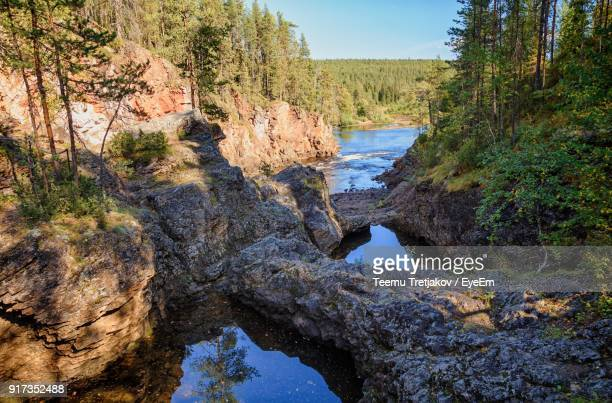 scenic view of river in forest - teemu tretjakov stock pictures, royalty-free photos & images
