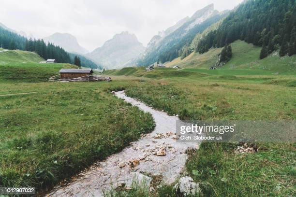 scenic view of river in  mountains in switzerland - shack stock pictures, royalty-free photos & images