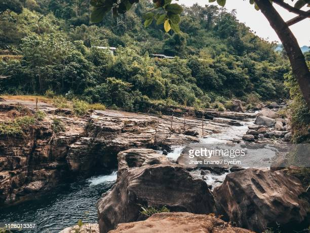 scenic view of rocks in forest - enano stock pictures, royalty-free photos & images