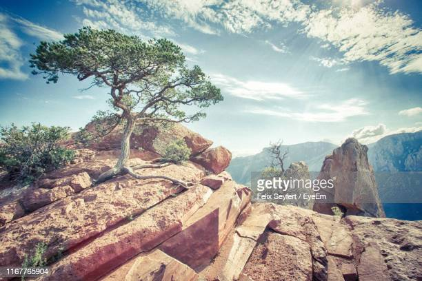 scenic view of rocky mountains against sky - big bend national park stock pictures, royalty-free photos & images