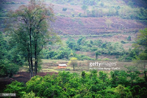 scenic view of rural landscape - ko ko htike aung stock pictures, royalty-free photos & images