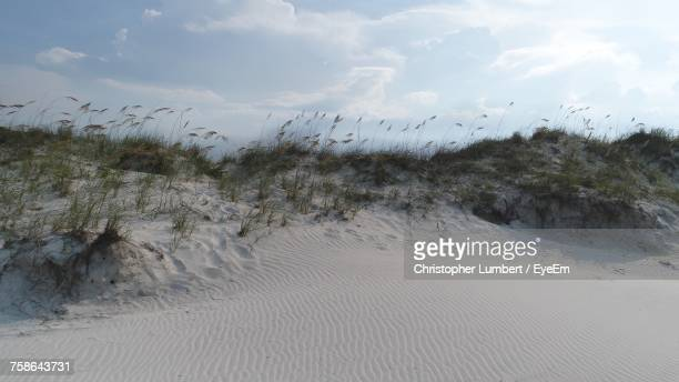 Scenic View Of Sand Dune Against Sky
