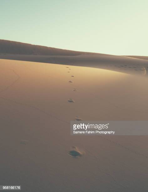 scenic view of sand dunes against clear sky - samere fahim stock photos and pictures