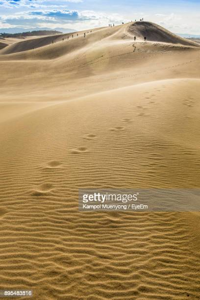 scenic view of sand dunes in desert against sky - tottori prefecture stock photos and pictures