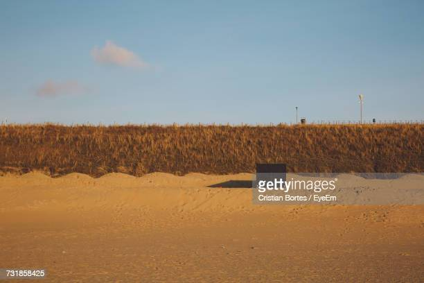 scenic view of sandy beach against sky - bortes stock-fotos und bilder