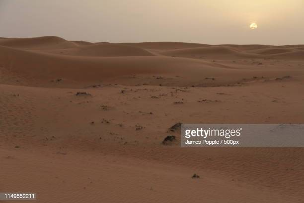 scenic view of sandy desert - james popple stock pictures, royalty-free photos & images