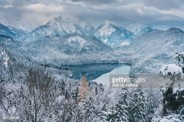 Scenic view of Schwansee  lake in Alps in winter