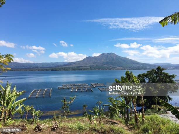 scenic view of sea against blue sky - kintamani district stock pictures, royalty-free photos & images