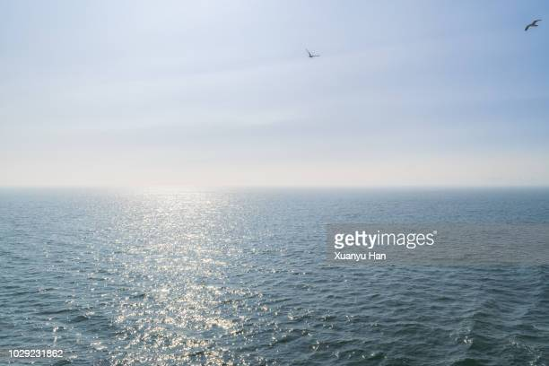 scenic view of sea against blue sky - sunny stock pictures, royalty-free photos & images