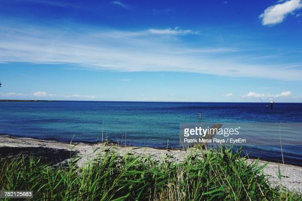 scenic view of sea against blue sky - fehmarn stock-fotos und bilder