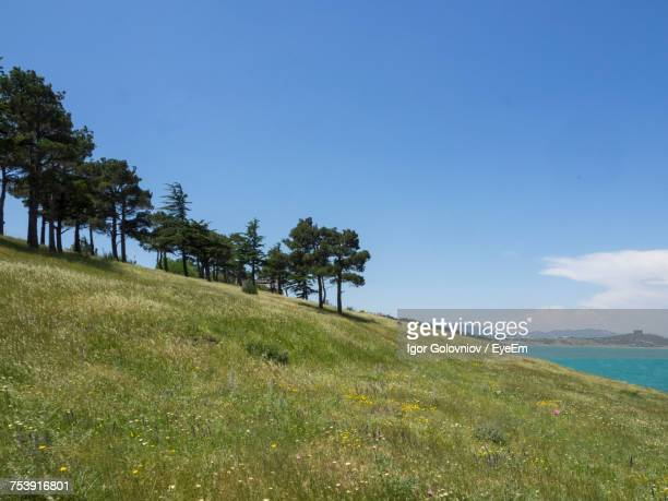 scenic view of sea against blue sky - igor golovniov stock pictures, royalty-free photos & images